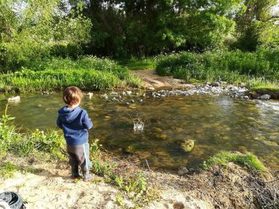 Atirar pedras ao rio